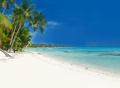 Punta Cana Vol + Hôtel