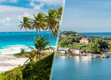 Petites Antilles: St. Lucia et Barbade