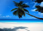 Vols Saint-Denis Mahe - Seychelles Intl , RUN - SEZ