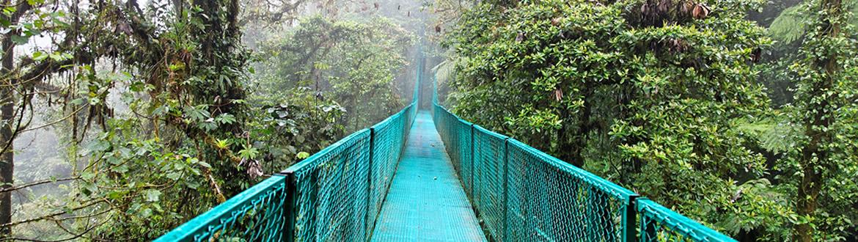 Costa Rica: Tortuguero, Caraïbe, Arenal, Monteverde et Manuel Antonio, circuit avec séjour à la plage