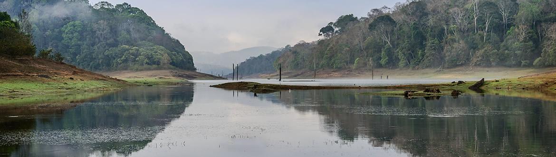 Inde: Inde du Sud et lac Periyar, circuit classique