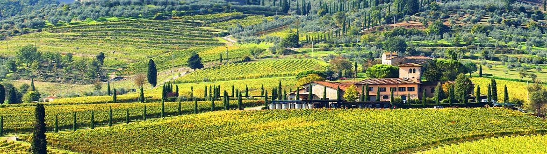 italie route travers la toscane de florence sienne sur mesure en voiture logitravel. Black Bedroom Furniture Sets. Home Design Ideas