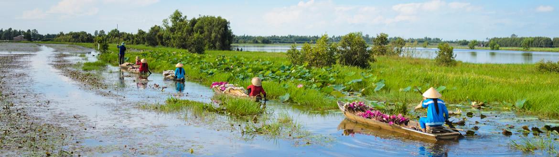 Vietnam: Du Nord au Sud avec le Delta du Mekong, circuit avec croisière