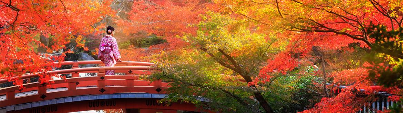 Le Japon et la Chine: Japon, Pékin, Xian et Shanghai, circuit classique