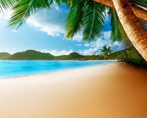 Vacances de la Toussaint. Offrez-vous un break au soleil !
